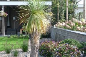 Voor- en achtertuin in Maasbommel